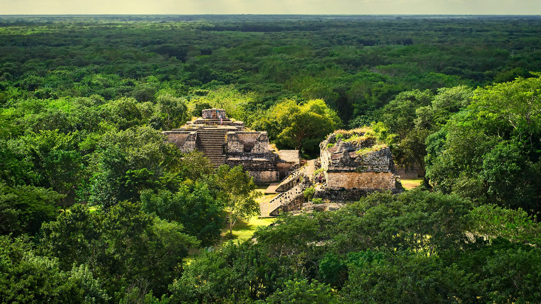 NCKRI Research made national geographic for their findings in Balamku, Yucatan, Mexico caves.